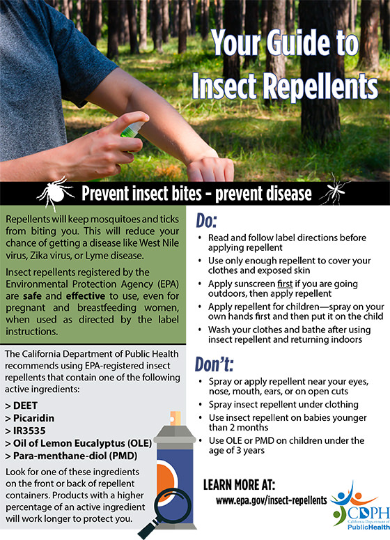 Your Guide to Insect Repellents